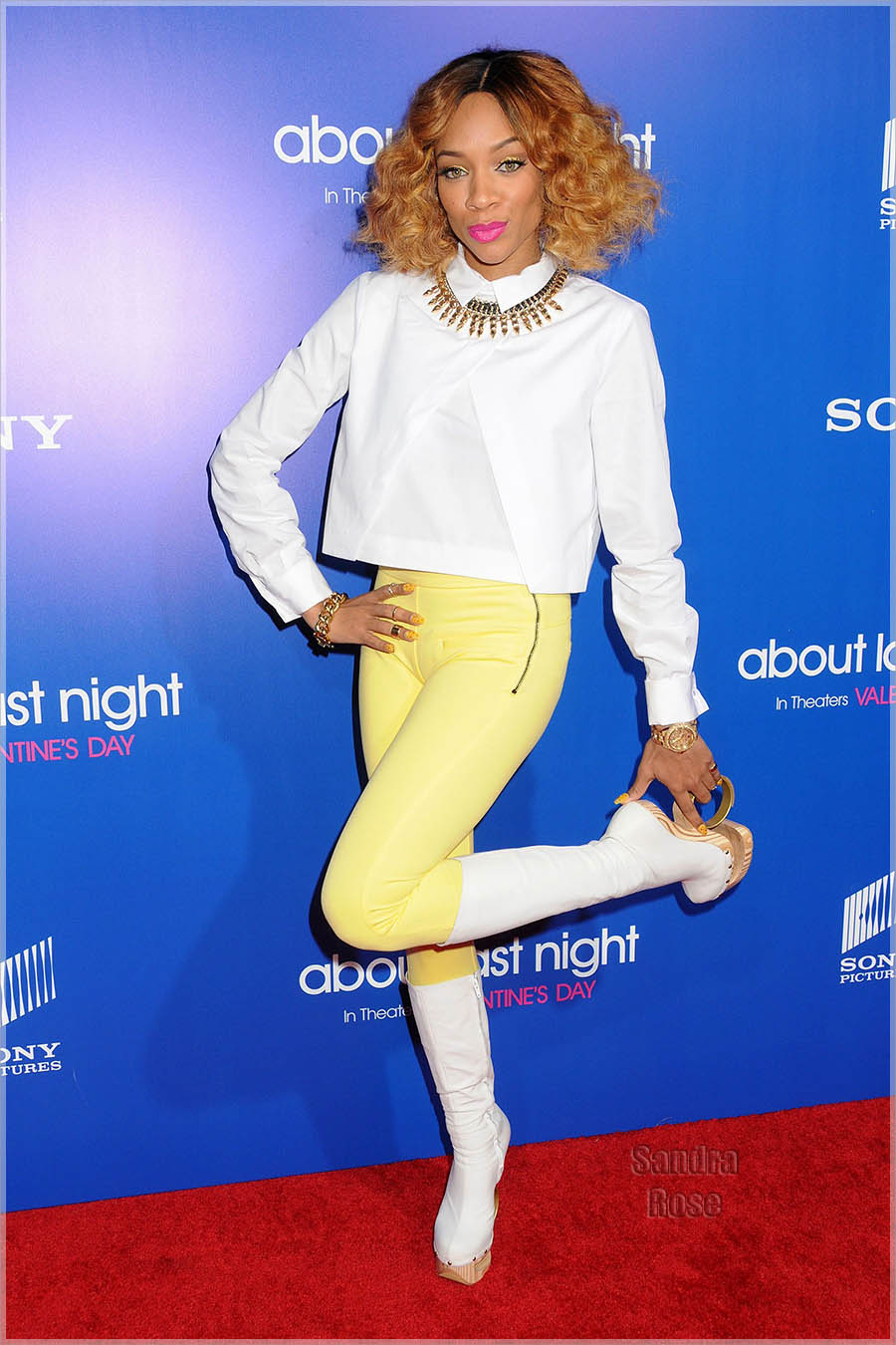The Pan African Film & Arts Festival premiere of 'About Last Night' - Arrivals