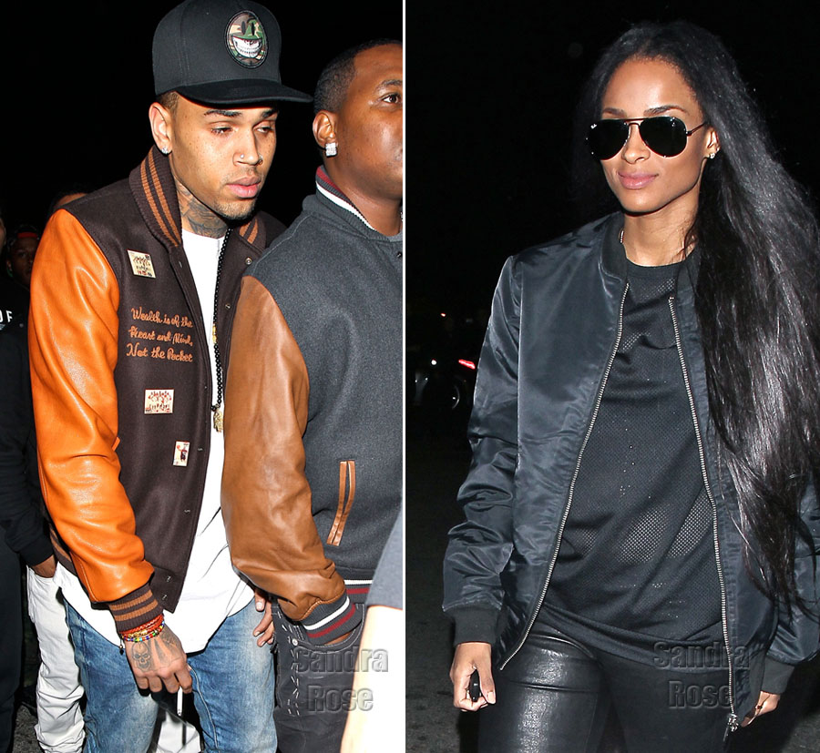 Chris Brown Ciara party together WENN