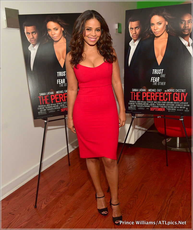 Sanaa Lathan and Michael Ealy attend The Perfect Guy Blogger Dinner