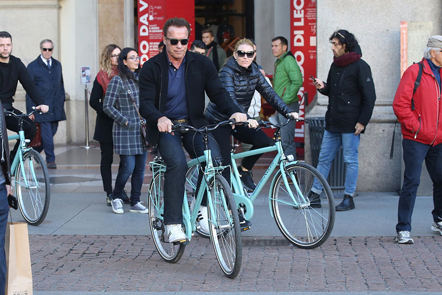Arnold Schwarzenegger, Heather Milligan