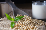 Soy Beans and Glass Of Soy Milk